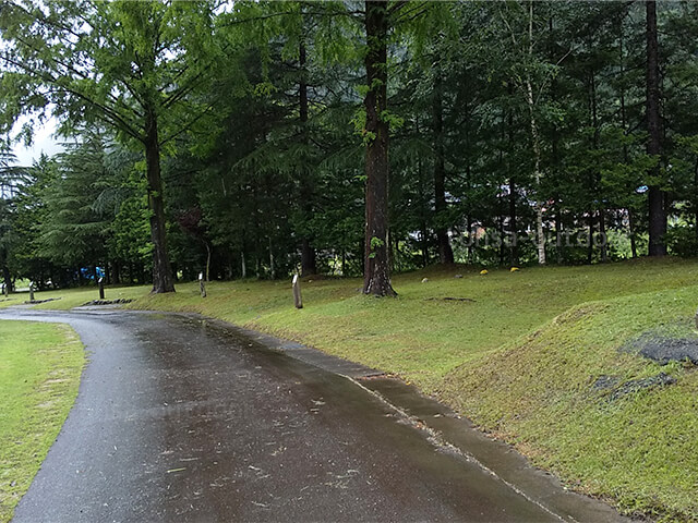 奥飛騨温泉郷 7月 夏キャンプ 飛騨市 高山市 2020